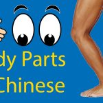 Body Parts in Chinese 👤 From Head to Toe Thumbnail